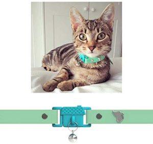 kittyrama collar