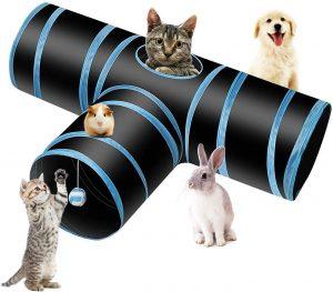 túnel gato