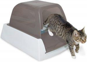Arenero para gatos autolimpiable Petsafe