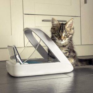 Comedero para gatos automatico