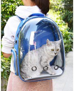 Gato en mochila trasportin transparente